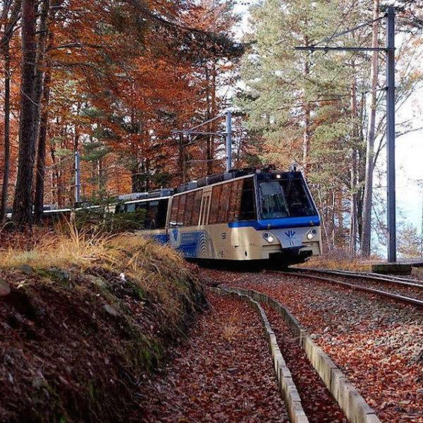 treno-blu-del-foliage