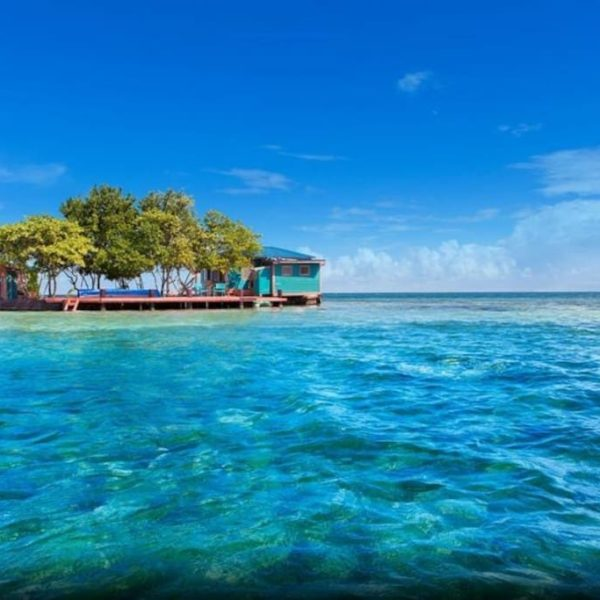 belize bird island