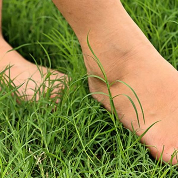 barefooting