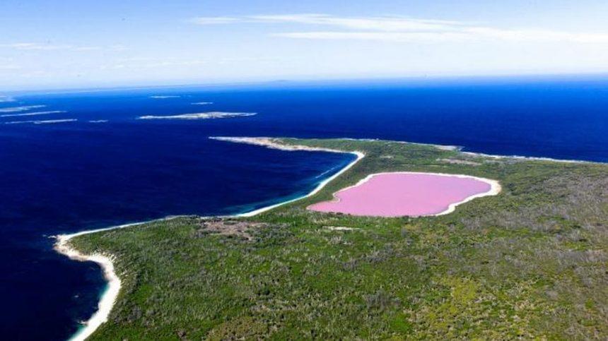 Laghi rosa: quando il mondo si tinge del colore più bello