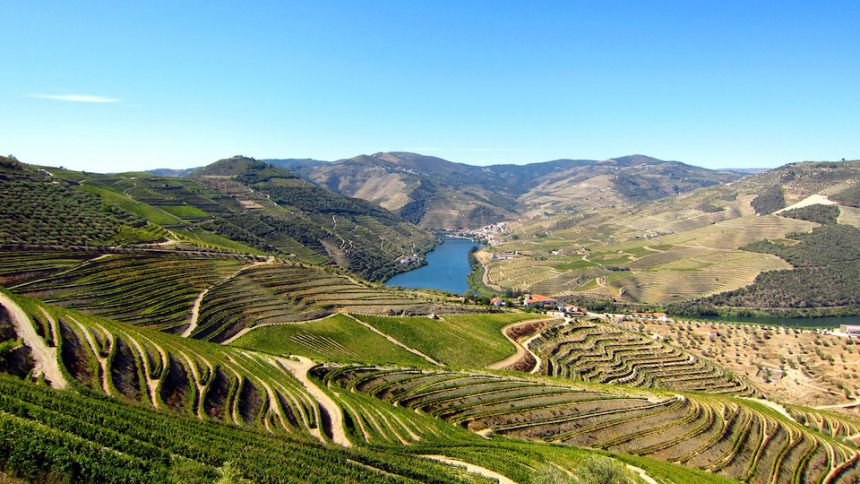 Douro Presidential Train: il treno più gourmet è in Portogallo