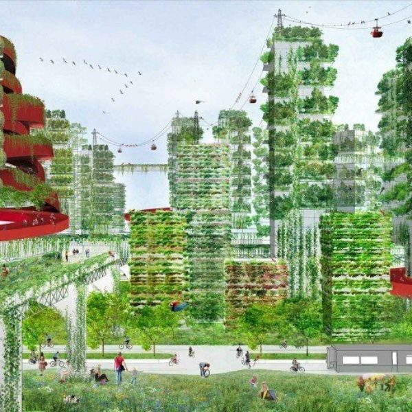 FOREST-CITY-VIEW