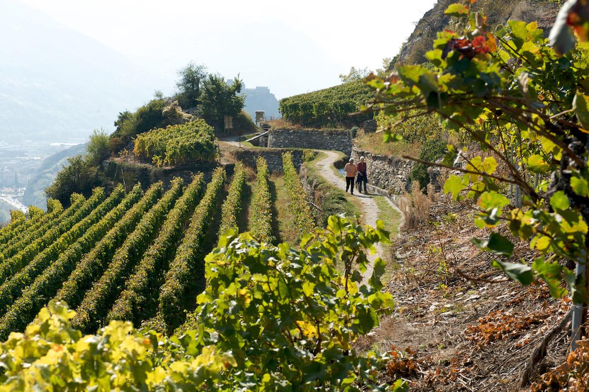 Canton Vallese Cammino di Vignoble
