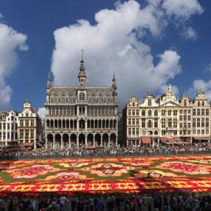 © www.visitbrussels.be_tapis de fleurs