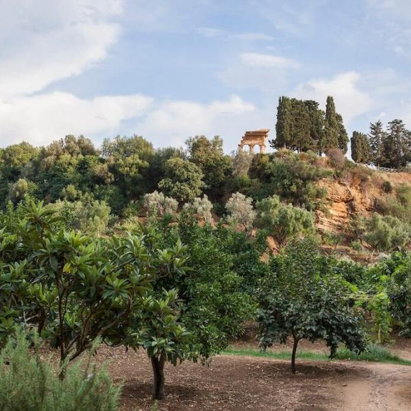 giardino-della-kolymbethra_45612