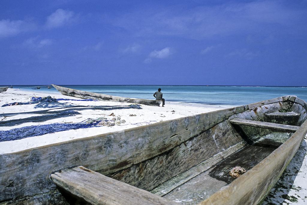 Zanzibar-Tanzania copia