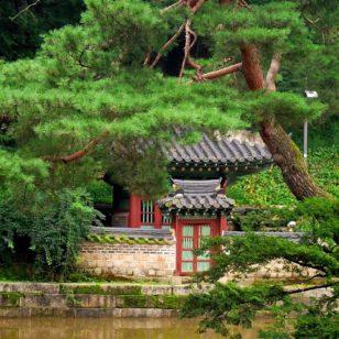 hanok-nel-verde-1024x685