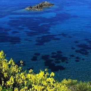 800px-Isola_d'Elba_-_Mare_di_Pomonte