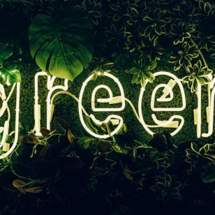 illuminated-green-sign-3626733