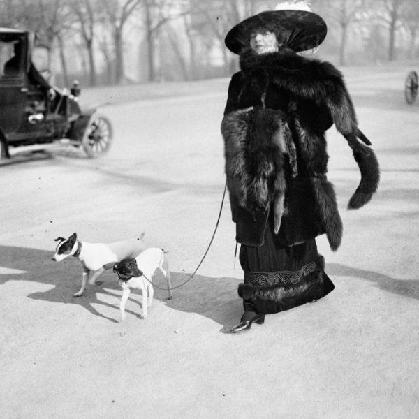 2. Anna la Pradvina, aussi appelée La femme aux renards, Avenue du Bois, Paris, 1911