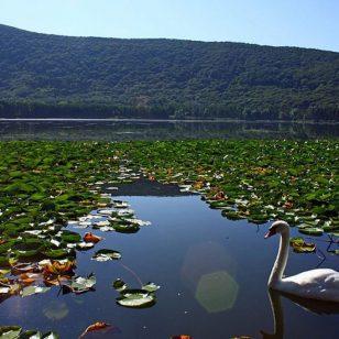 Basilicata-lago-di-monticchio-bb372264-147d-4d84-82fd-f4aaa600e3ba