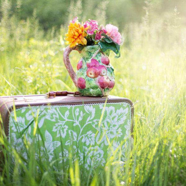 summer-countryside-grass-outdoor-35799